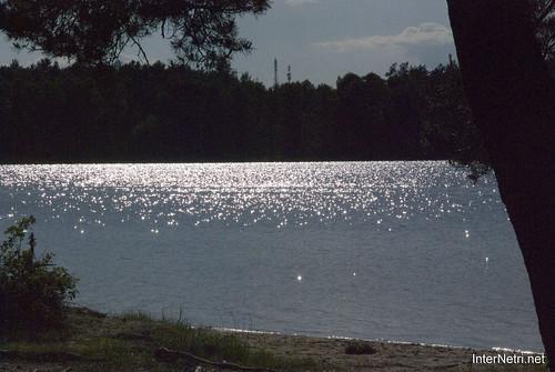 Шацький Національний Природний Парк Озеро Пісочне  Блиск сонця в воді InterNetri  Ukraine 116