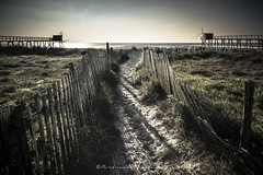 Les Explorateurs (Bertrand Thiéfaine) Tags: d850 hiver lesmoutiers nikon pêcherie sable dune loireatlantique plage océan chemin clôture évasion duo voyage