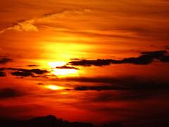 Sky on Fire (The-Beauty-Of-Nature) Tags: summer may mai nature germany deutschland plants pflanzen green grün lush sunny sun sonne sonnig warm evening abend fields feld