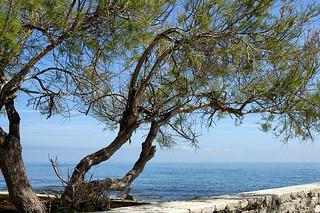 Au-calme-dans-le-Cap-Corse