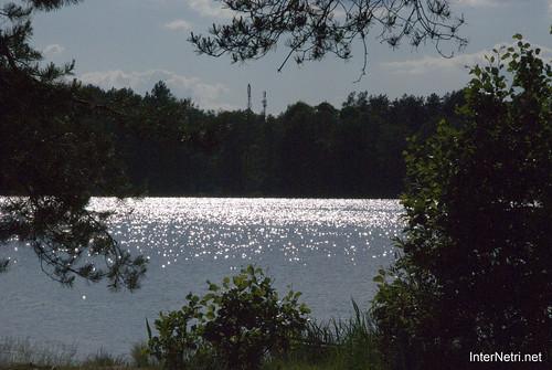 Шацький Національний Природний Парк Озеро Пісочне  Блиск сонця в воді InterNetri  Ukraine 114