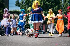 PugCrwal-115 (sweetrevenge12) Tags: portland oregon unitedstates us pug parade crawl brewing sony pugs dog pet