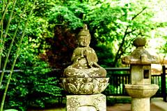 Stone Buddha of Tokeiji Temple, Kamakura : 東慶寺境内の可愛い石仏 (Dakiny) Tags: 2018 spring may kanagawa kamakura kitakamakura city street temple tokeiji nikon d750 nikonafsmicronikkor60mmf28ged afsmicronikkor60mmf28ged