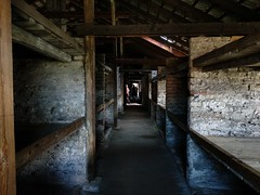2018-05-25 14.11.04-2 (albyantoniazzi) Tags: auschwitz birkenau memorial museum camp silesia katowice krakow poland polska europe travel voyage