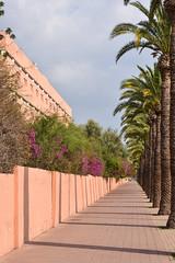 Marrakesh, Morocco (scuba_dooba) Tags: morocco africa marrakesh north
