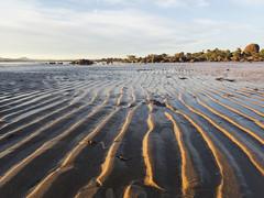 Sand ripples (Baractus) Tags: sand ripples john oates hawleybeach tasmania australia inala nature tours