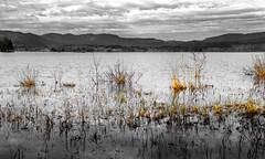 Lakeside Composition (bjorbrei) Tags: water lake shore hills marsh marshland sky clouds kjelsås maridalen maridalsvannet oslo norway