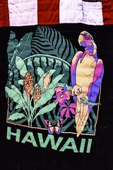 Hawaii (Thad Zajdowicz) Tags: zajdowicz availablelight lightroom usa travel leica art artist rosieleetompkins hawaii detailquilt parrot nationalgalleryofart washington dc museum indoor inside color green purple yellow red white colour