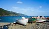 Bateau (benoubenoubenou) Tags: cinque terre fleur bateau