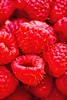 Red raspberries. (perfectionistreviews) Tags: color vertical studio stilllife indoors nobody produce diet snack wholesome nutritional healthy health nutrition fruit food natural berries berry raspberries raspberry smallgroupofobjects foodanddrink