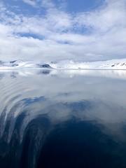 Ripple in Still Water
