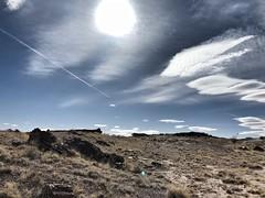 IMG_3390 (adrien.boublil) Tags: arizona roadtrip usa cowboy western photography grandcanyon phoenix tucson saguaro sinagua horses monumentvalley johnwayne petrifiednationalforest canyondechellynationalmonument antelopecanyon flagstaff harkins poncho meteorcrater landscapes
