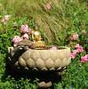 (Wonderlane) Tags: agardenforthebuddha statue flowers fountain summer broadview seattle washington usa 1285