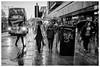 Princes Street (ianrwmccracken) Tags: nikkor50mmf18 d750 nikon edinburgh street people walking wet candid bw ianmccracken mono umbrella princesstreet water concrete rain pavement bus