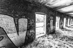 FostographyMedia (4) (Fostography Media) Tags: abandoned building graffiti group landmark landscape people smoke flash mittagong newsouthwales australia au