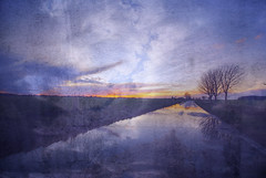 Sunset Flood (nigdawphotography) Tags: sunset sunlight cloud clouds flood puddle water rain reflection reflected road lane trimmsgreen essex