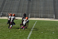 _DSC6600 (zombieduck2010) Tags: 2014 apple valley rattlers youth football jr pee wee victorville cowboys