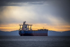 Alpha Hope (Paul Rioux) Tags: marine ship vessel alphahope commercial freighter bulkcarrier clouds weather water ocean sea rain prioux