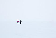 Seuls sur la glace
