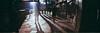 Londres (jperezsl) Tags: 400 fujifilm lomo londres sprocketrocket superia