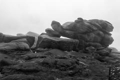 NB-8.jpg (neil.bulman) Tags: countryside longshawestate peakdistrict nature nationalpark derbyshire longshaw rocky rocks sheffield england unitedkingdom gb