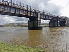 Ribble in full flood