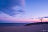 Tree at sunset (E. Aguedo) Tags: sunset clouds sand rocks tree colors long exposure beach new england conimicut warwick ngc