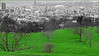 Fafchamps, Liège, Belgium (claude lina) Tags: claudelina belgium belgique belgië liège fafchamps champs pré paysage landscape ville town prairie