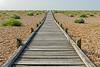 Boardwalk (Geoff Henson) Tags: boardwalk wood path footpath beach shrubs planks