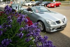 Macro Benz (mateusz.jedrak1) Tags: