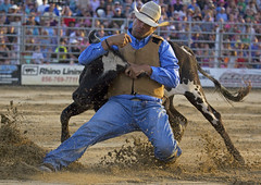 (emmett.hume) Tags: rodeo cowboy steer wrestling sports strength leverage skill daring determination west america man contest competition tradition cow summer equine denim hat sand 1025fav cowtown