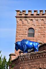 Blue Bison (MarkusR.) Tags: mrieder markusrieder nikon d7200 nikond7200 vacation urlaub fotoreise phototrip usa 2017 usa2017 southdakota hotsprings town city stadt fallrivercounty