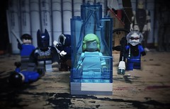 Heart of Ice (Lord Allo) Tags: lego batman dc mister freeze nora victor fries 2006 2008