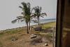SriLanka 17_18 (44 von 48) (philip.eggimann) Tags: srilanka reisebilder travelling