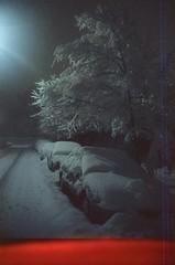 Snowy Street, Brooklyn (josephkrings) Tags: 34thstreet 35mm brooklyn cinestill800t nyc nikkor28105mm13545 nikonn70 night snow snowstorm tree