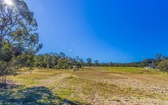 Lot 115 Tareeda Way, Spring Grove NSW