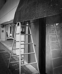 Ladder (Bill Morgan) Tags: iphonex apple ladder street bw alienskin x3 jpeg