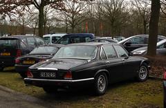 1981 Daimler Sovereign 4.2 Automatic (Series III) (rvandermaar) Tags: 1981 daimler sovereign 42 automatic seriesiii series iii sidecode4 gt32rg jaguar xj jaguarxj daimlerxj daimlersovereign