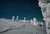 Snowman's Land (Björn Knif) Tags: pyhäluosto ukkoluosto lapland finland night snow moonlight stars trees