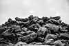Pile (nateabrown) Tags: joshuatree desert cali california ilford iso400 blackandwhite grain landscape palmsprings rock geology minolta