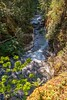 Little Qualicum River Gorge (MIKOFOX ⌘ Thanks 4 Your Faves!) Tags: canada river falls xt2 water learnfromexif july rocks landscape provia gorge fujifilmxt2 mikofox showyourexif xf18135mmf3556rlmoiswr