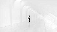 I C E . A G E (Panda1339) Tags: highkey wideangle usa abstract milwaukee wi cinematic museumofmodernart reflection blackandwhite monochrome streetphotography architecture minimalism wisconsin