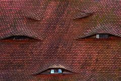 immer lächeln !! (he-photogrphy) Tags: ziegel dach gauben gesicht augen mund zwinkern zahnlücke täuschung