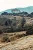 Tempo Grande, Segesta (jacqueline.poggi) Tags: dorictemple italia italie italy provinciaditrapani segesta sicile sicilia sicily templedeségeste archaelogy archeology architecture architettura archéologie greekperiod greektemple tempio tempiogreco templedorique templegrec