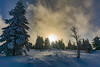 DSC03621 (pack-your-suitcase photography) Tags: sunrise sonnenstrahlen baum schwarzwald schnee snow sky panorama