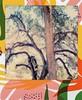 cottonwood trees, tropical frame (EllenJo) Tags: polaroid tropical tropicalframe polaroid600 sx70 cottonwoods tuzirap trees riparian forest clarkdale arizona az