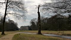 Kasteel Broekhuizen -Leersum (Cajaflez) Tags: bomen baumen arbres broekhuizen kasteel leersum coth5
