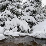 Harz-Oderbrueck_e-m10_1012053824 thumbnail