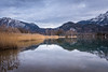 Kochelsee (hjuengst) Tags: lake kochelsee bavaria bayern mountain berge alps alpen weed gras snow reflection reflektionen schnee schlehdorf