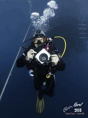 IMG_4478-M1s (oalard) Tags: redsea merrouge g16 sousmarine submarinephotography diver plongeur